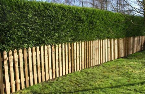 picket-garden-fence-